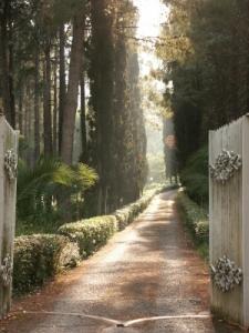 What lies beyond the narrow gate